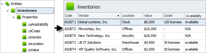 IT Inventory Software Database Customization